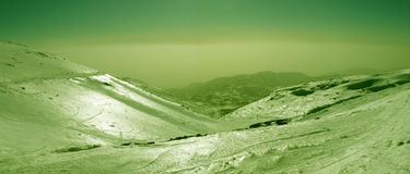 Avocado country. Landscape made from acocado Royalty Free Stock Image