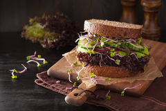 Avocado cucumber sandwich with onion and radish sprouts Royalty Free Stock Photo