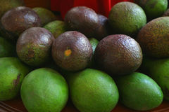 Avocado on Display. Avocados on display in a fruit market Stock Photo