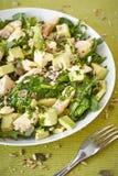 Avocado ed insalata di pollo Fotografia Stock Libera da Diritti