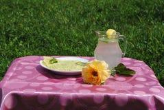 Avocado en limonana Royalty-vrije Stock Fotografie