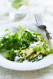 Avocado and Endive Salad with Yogurt Dressing Royalty Free Stock Image