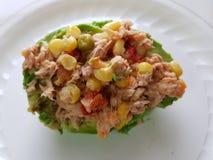 avocado faszerujący z tuńczyk sałatką z warzywami fotografia royalty free
