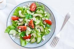 Avocado, feta ed insalata delle verdure Fotografia Stock Libera da Diritti