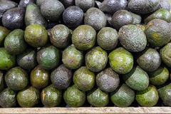 Avocado in food market Royalty Free Stock Photo