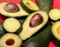 Avocado freschi fotografie stock