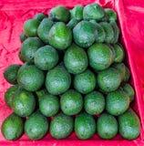 Avocado fresco Immagini Stock