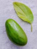 Avocado fresco su fondo di pietra Alimento sano dell'avocado organico Immagini Stock Libere da Diritti
