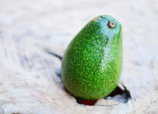 Avocado. Fresh avocado on wooden background Stock Photography