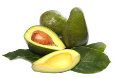 Avocado fruit Stock Photos