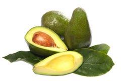 Avocado fruit. On a white background Stock Photos