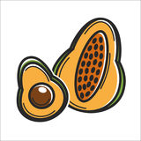 Avocado fruit Cuba travel popular destination and famous culture landmark vector icon. Avocado or mango fruit symbol for Cuba travel destination and famous Royalty Free Stock Photo