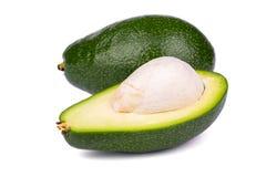 Avocado fruit Stock Photography