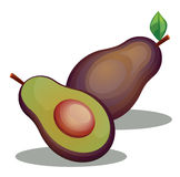 Avocado fruit image. Vector drawing of an avocado fruit royalty free illustration