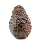 Avocado fruit studio shot Royalty Free Stock Image