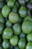 Avocado fruit on Traditional Market Royalty Free Stock Photography