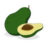 Avocado Fruit. Vector illustration of an avocado fruit Stock Photography