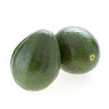 Avocado fruit. On white background Stock Photos