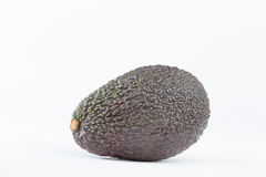 Avocado fruit Stock Photography