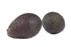 Avocado fruit on white Stock Photography