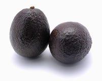 Avocado fruits Royalty Free Stock Image