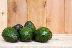 Avocado fruits Stock Images