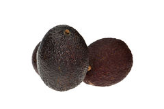 Avocado fruits Royalty Free Stock Photo