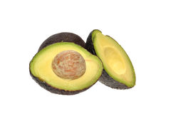 Avocado fruits Stock Images