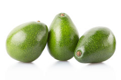 Avocado fruits group isolated on white Royalty Free Stock Image