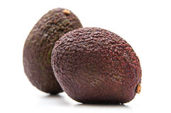 Avocado fruits Royalty Free Stock Images