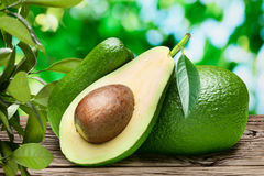 Avocado fruits on the old wooden table. royalty free stock photography