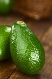 Avocado Fuerte. On dark wood (Selective Focus, Focus on the front Stock Photography