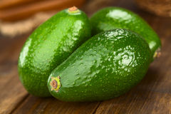 Avocado Fuerte. Three Avocados Fuerte on dark wood (Selective Focus, Focus on the front Royalty Free Stock Photo