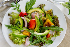 Avocado and Grilled vegetables salad Royalty Free Stock Photography