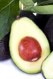 Avocado Half Royalty Free Stock Images