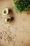 Avocado halves with baby spinach leaves on a concrete,stone or slate background. royalty free stock photo