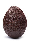 Avocado Hass Bilse, brown Persea americana, paths. Whole brown Hass or Bilse avocado, Persea americana, upright standing. Clipping paths, shadow separated Stock Photo