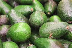 Avocado heap on open market Stock Image