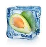 Avocado in ice cube Stock Photos