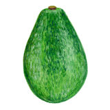 Avocado illustration  on white background, Hand drawn vector engraved sketch, Vintage tropical organic natural Stock Photography