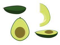 Avocado isolated. In several variations including empty halved and sliced royalty free illustration