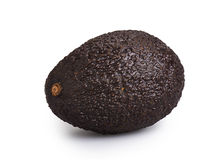 Avocado isolated Stock Photography