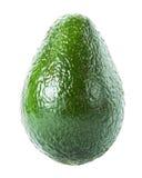 Avocado isolated on white background. Fresh green Avocado frui Royalty Free Stock Image