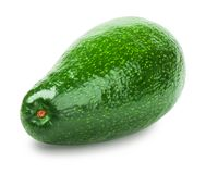 Avocado isolated on white. Background. Whole avocado close-up with clipping path royalty free stock image