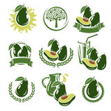 Avocado labels and elements set. Vector Stock Photos