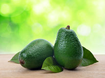 Avocado with leaf Stock Images
