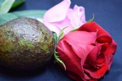Avocado-Liebe lizenzfreies stockbild