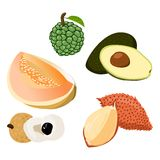 Avocado, Longan, Salacca, Rollina, Cantaloupe Stock Photo