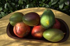 Avocado mango papaya pomegranate Stock Photography