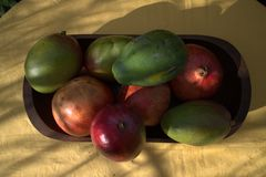 Avocado mango papaya pomegranate Royalty Free Stock Photo